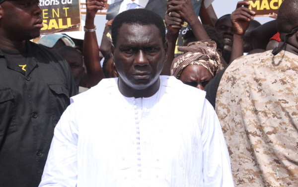 DIRECTEUR GÉNÉRAL DU PORT AUTONOME DE DAKAR : Cheikh Kanté, un inculte promu par « inadvertance républicaine »