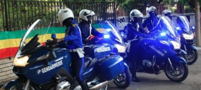 La Gendarmerie de Darou Mousty saisit 21 KG de drogue : le trafiquant en provenance de Touba, ralliait Saint-Louis