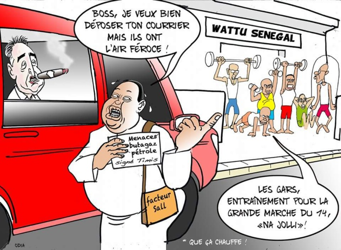 Timis, Facteur Sall et Wattu Sénégal......(par Odia)