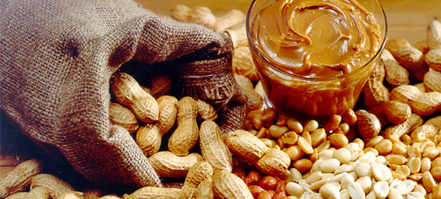 Financement de la campagne arachidière : L'Etat injecte 32,2 milliards Fcfa à la Sonacos Sa
