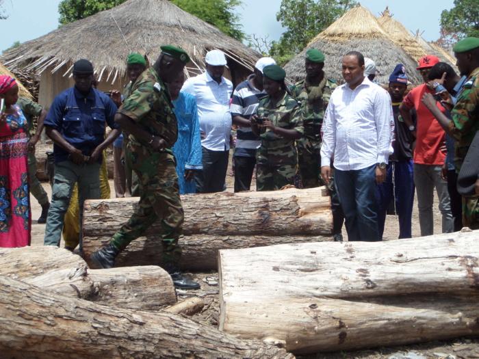Malaise au ministère de l'environnement : Le Directeur des Eaux et Forêts défie Bibi Baldé