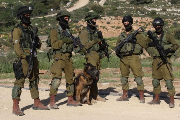 Un journal suédois accuse l'armée israélienne de trafic d'organes de Palestiniens En savoir plus sur http://www.lemonde.fr/proche-orient/article/2009/08/24/un-journal-suedois-accuse-l-armee-israelienne-de-trafic-d-organes-de-palestiniens_1231333_321