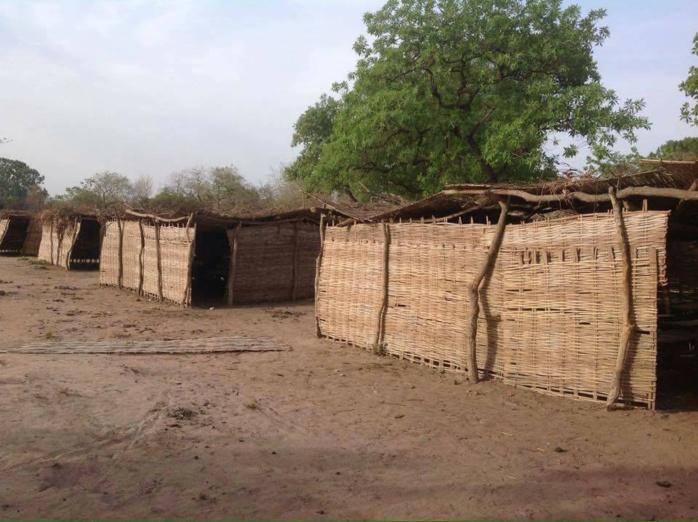 """Pendant qu'on installe une nouvelle institution """"machin"""" de 5 milliards (HCCT), voilà la situation de plusieurs écoles au Sénégal !!! Avons nous le sens des priorités au Sénégal?"""