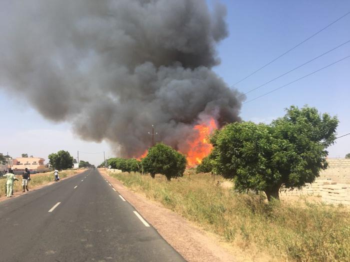 INCENDIE MYSTÉRIEUX À DIOURBEL : La maison de Baye Oumar Sy brûle chaque année depuis 40 ans