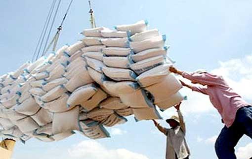 Vente clandestine de l'arachide : Les personnes impliquées seront convoquées promet le chef du service régional du commerce de Kaolack