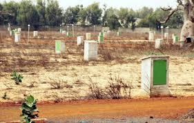 LITIGES TERRITORIAUX RÉPÉTÉS ENTRE COMMUNES : L'ombre de Mbane plane sur le Saloum