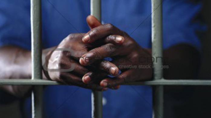 """GAMBIE : Un """"Jungullar"""" impliqué dans le meurtre du journaliste de Dayda Aidara arrêté"""