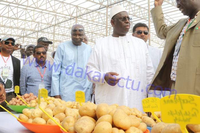 Les images de la tournée économique du président Macky Sall à Saint-Louis et Dagana