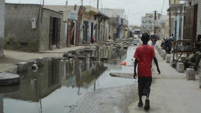 Saint-Louis : Les populations exaspérées par le refoulement des eaux usées à Pikine Tableau Walo