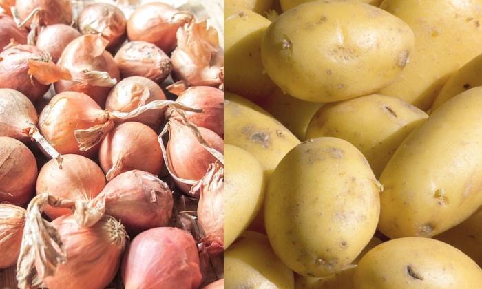 Vers l'homologation du prix de l'oignon et de la pomme de terre
