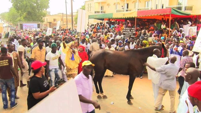 LOUGA : Mamour Diallo offre un cheval à Mahamed Boun Abdallah Dionne