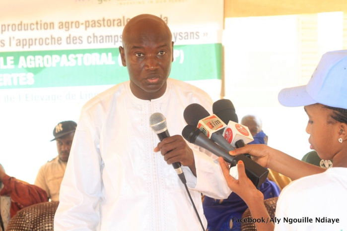 """ALY NGOUILLE NDIAYE : """" Le Djoloff sait ce que le Président Macky Sall a fait pour nous """""""