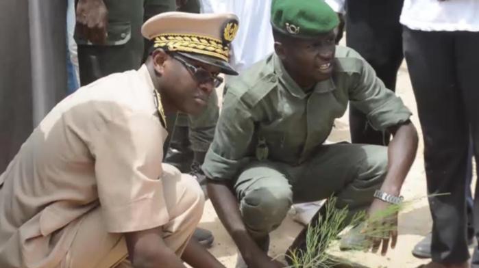 Célébration de la Journée régionale de l'arbre à Saint-Louis : Le village de Diel Mbame accueille l'événement