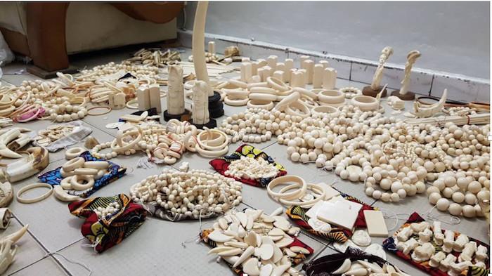 Criminalité Faunique:  Saisie de 780 pièces d'Ivoire d'éléphant au marché artisanal de Soumbédioune
