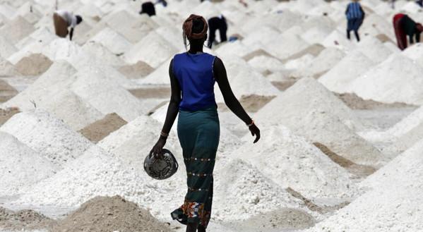 KAOLACK : Plus de 80 tonnes de sel non iodé saisies par les services du commerce
