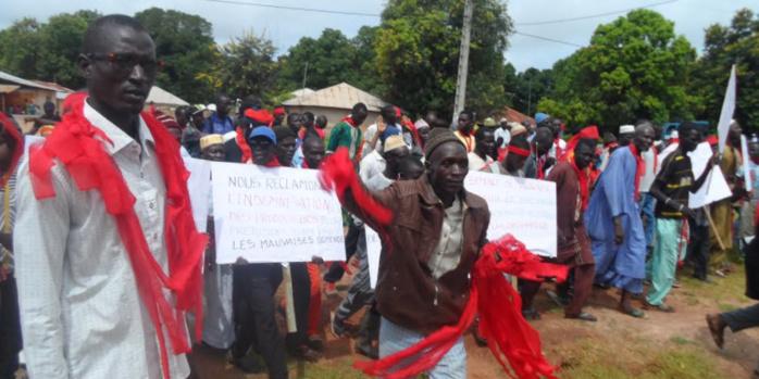 Les producteurs du dac de séfa ont marché pour réclamer le remboursement des apports versés et leur indemnisation.