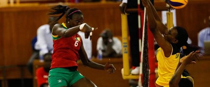 Volley-ball/Championnats d'Afrique 2017 : Les Lionnes chutent face au tenant du titre