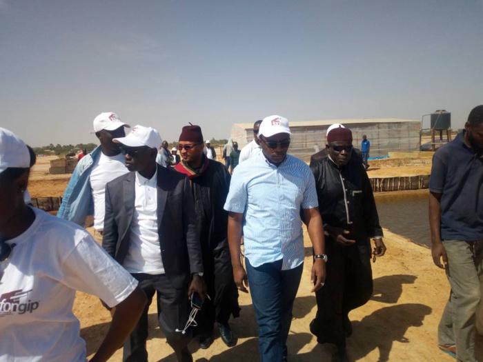 Au deuxième jour de sa tournée nationale, le Fongip délivre des financements aux femmes de Fimela et Gossas