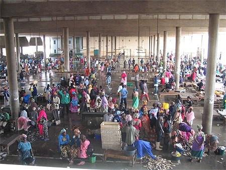 Journée Set-Sétal au Marché central au poisson : le premier chantier du nouveau directeur