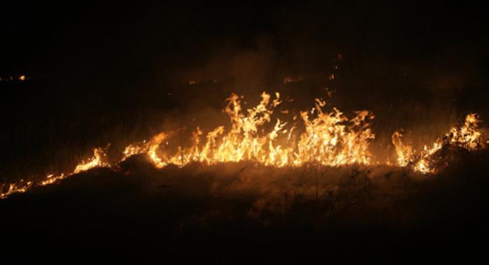 Koungheul : Un violent incendie détruit une vingtaine de maisons