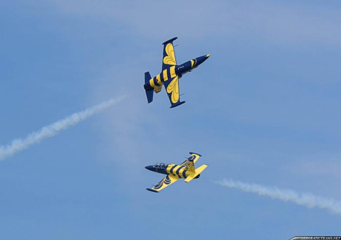 4 AVRIL / SHOW DES L-39- Ce flou qui entoure le discours de l'armée... Ténèbres sur une acrobatie aérienne... Qui a payé la facture de Baltic Bees?