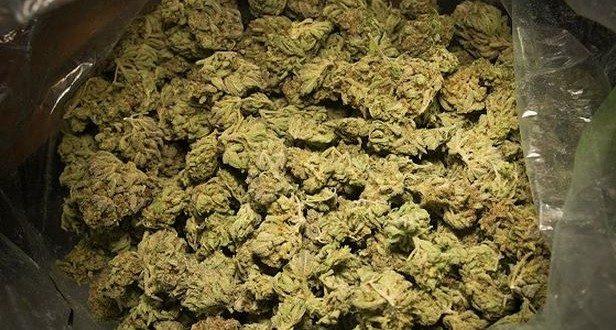Douane sénégalaise : saisie d'une importante quantité de drogue, dont 463 kg de brown