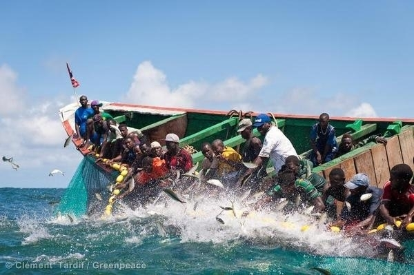 Tensions entre garde-côtes mauritaniens et pêcheurs sénégalais : Greenpeace pour une solution définitive