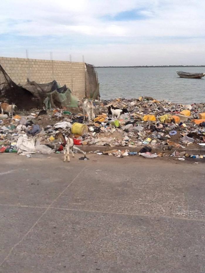 SAINT-LOUIS - Insalubrité dans le quartier de Gokhou-Mbathie : Les populations tirent la sonnette d'alarme