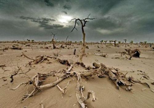Le déficit pluviométrique est-il inhérent à la colère divine, à la crise environnementale et/ou aux méfaits du régime