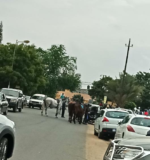 ACCIDENT : Un élève gendarme tombe de son cheval et se blesse