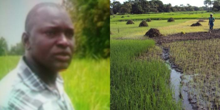 Success story de Amadou Diaby : De Dallas aux rizières de Vélingara...