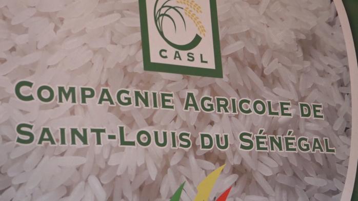 Compagnie agricole de Saint-Louis (Casl) :  Les bons points de la riziculture dans la vallée
