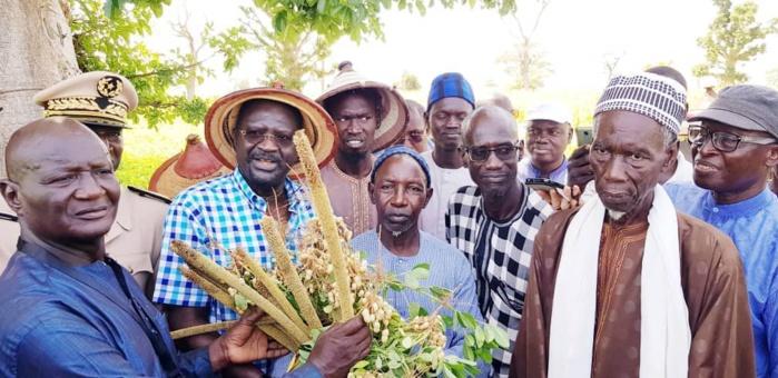 """Dr Papa Abdoulaye Seck à Thiès : """" On a une bonne campagne agricole matérialisée par un bon développement végétatif..."""""""