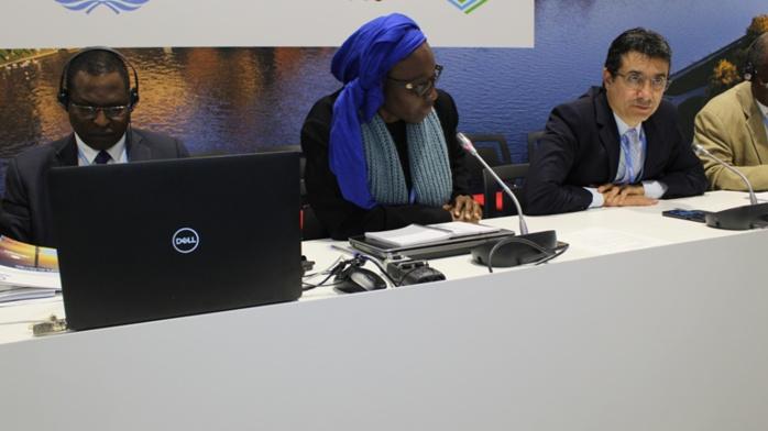 COP 24- Changements climatiques : Le Stand du Sénégal pour vendre les efforts de notre pays
