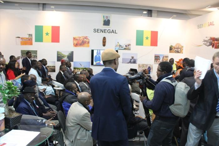 COP 24 - Journée du Sénégal : « Nous pouvons lutter contre les changements climatiques tout en permettant aux consommateurs de continuer à bénéficier de services énergétiques…»