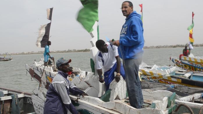 Accord de pêche Sénégal / Mauritanie : Les opérations de pose des scellés ont démarré à Saint-Louis