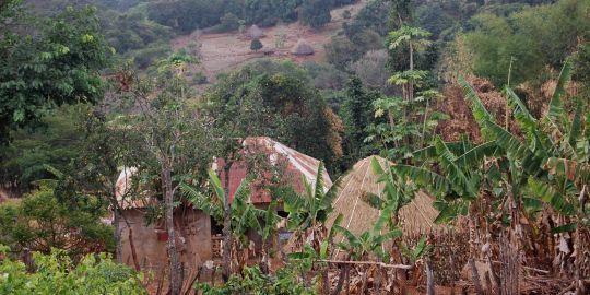 """Voyage au village de Nafissatou Diallo""."