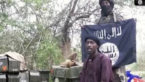 Boko Haram : Abu Mus'ab al Barnawi destitué par Abu Bakr al Bagdadi