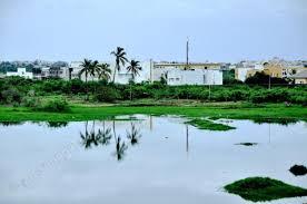 Grande Niayes de Pikine classée réserve naturelle urbaine : toute activité de mise en valeur nécessairement soumise au contrôle de conformité environnementale