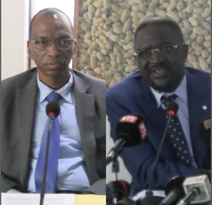 Agriculture : Une avancée du système semencier notée au Sénégal