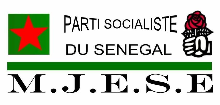 Communiqué du MJESE (Mouvement des Jeunes et Etudiants Socialistes en Europe)