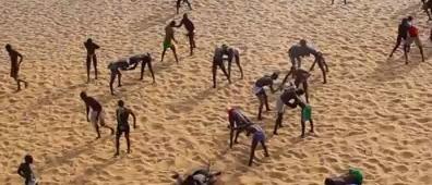 L'arène politique sénégalaise, par l'absence d'un arbitrage impartial incontestable, se transforme en un véritable « Lambi Golo »  (Mandiaye Gaye)