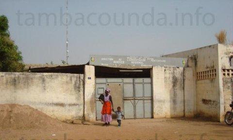 Prison de Tambacounda : Malick Noël Seck loge dans la cellule des mineurs et refuse de s'alimenter