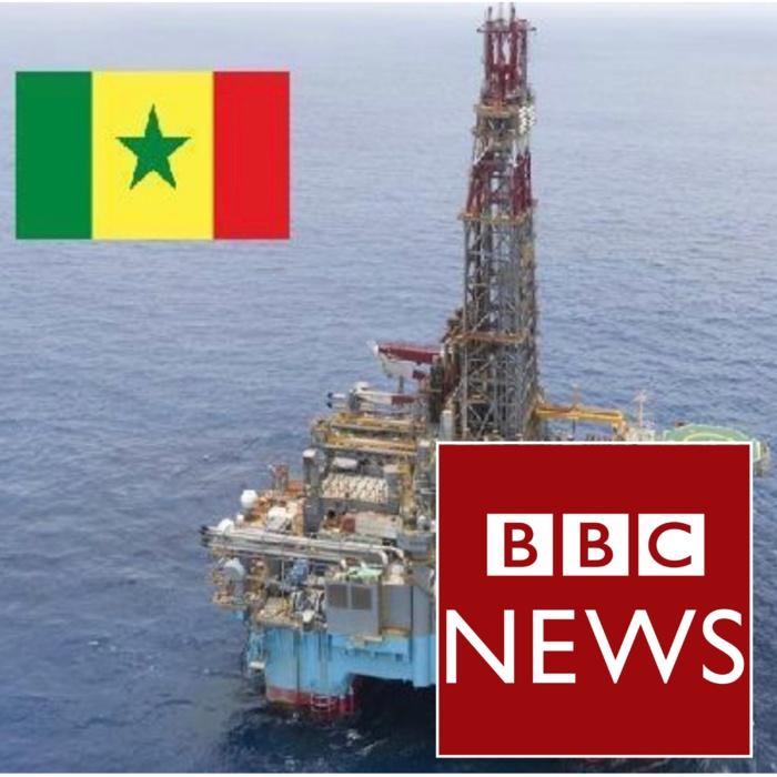"""Reportage de la BBC sur le pétrole: La chambre africaine de l'énergie parle d'une """"obsession de ternir l'image du Président Macky Sall"""" et prend la défense de l'industrie pétrolière"""