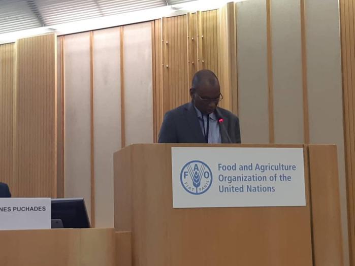 41ème Session de la FAO à Rome : Le ministre Moussa Baldé conduit la délégation sénégalaise