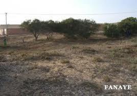 Le projet de Fanaye transféré  à Nianga Edy, toujours dans le Podor