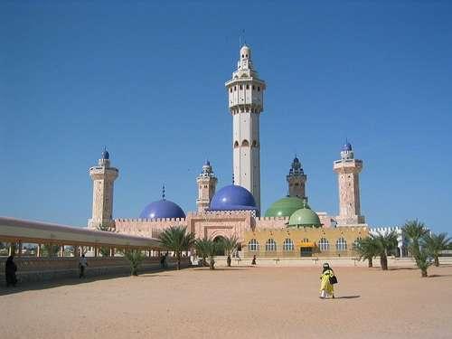 Sénégal: La course au ndigueul