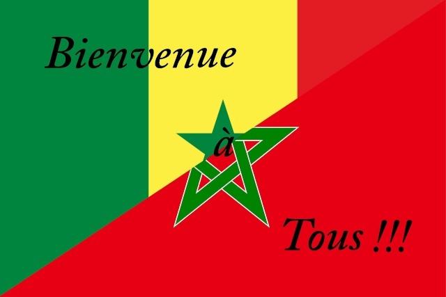 Ouverture des journées économiques et commerciales marocaines au Sénégal.