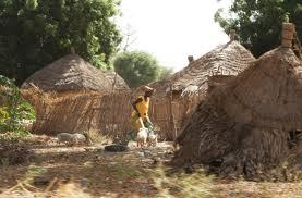 Projet d'octroi de salaires aux chefs de villages: le Fouladou multiplie ses patelins
