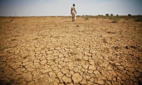 Dégradation des terres / Salinisation : Les chiffres qui font peur